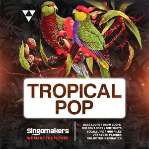 Singomakers Tropical Pop Drum Samples