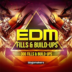 EDM Fills and Build Ups